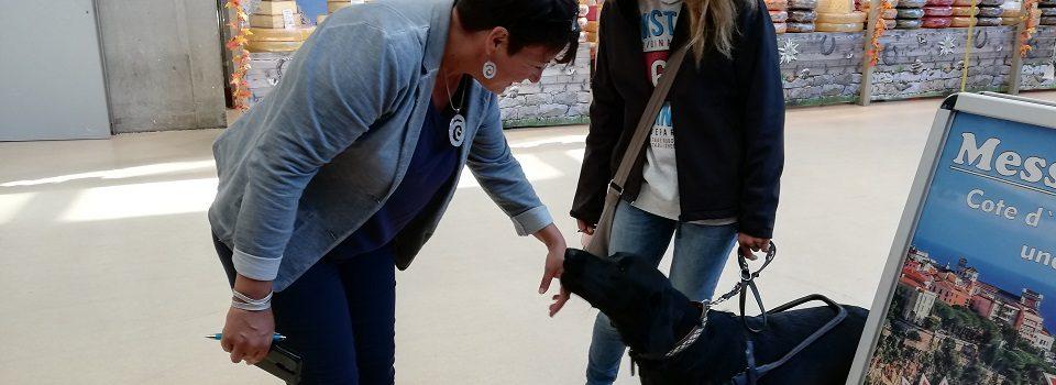 Eine Dame begrüßt einen Reha-Hund auf der Messe